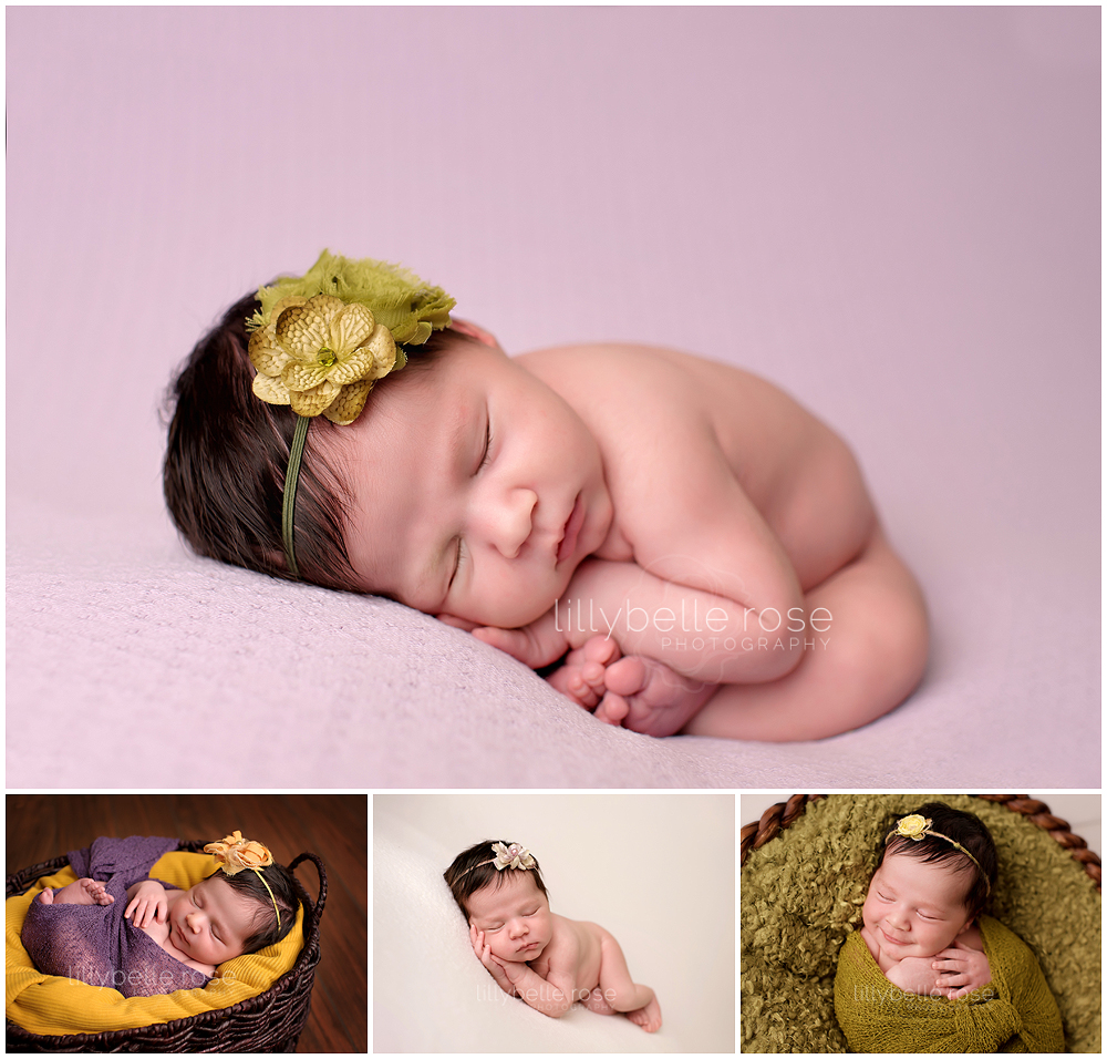 Chicago newborn photographer, Glen Ellyn Newborn Photographer, Studio
