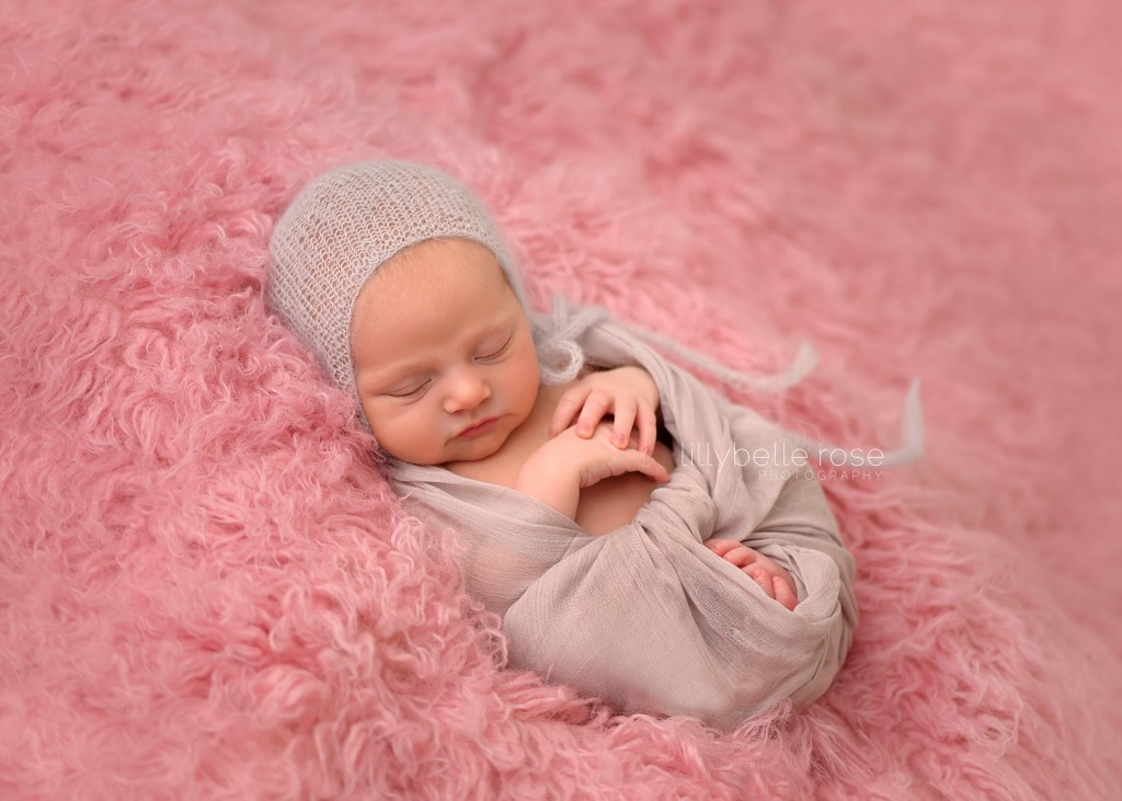 Chicago newborn photographer, Naperville Newborn Photographer, Hannah